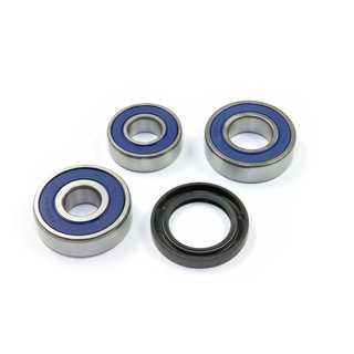 All Balls Wheel Bearings and Seals Kit 25-1271